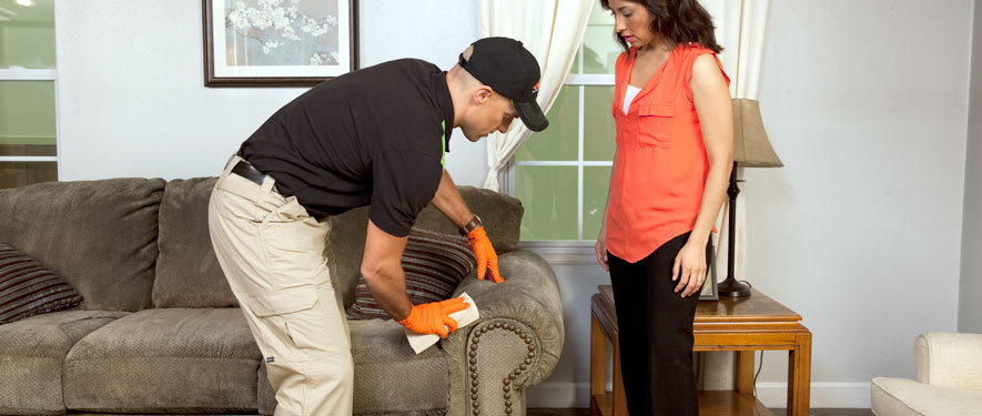 Acworth, GA carpet upholstery cleaning